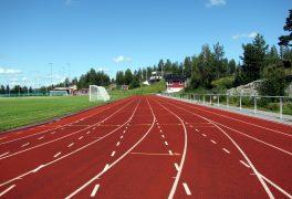 Výsledky Letní olympiády dětí a mládeže
