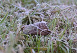 Zatím sníh nemáme, ale snad se to brzy změní