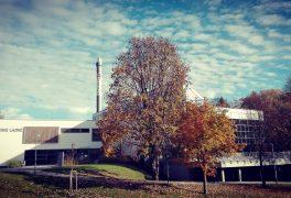 Podzimní prázdniny🍁🍂 26.10. – 30.10. 🍁🍂